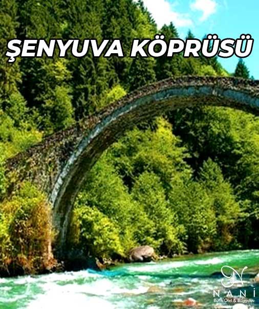 Rize Çamlıhemşin Şenyuva Köprüsü